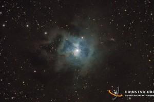 Туманность «Ирис» в Цефее NGC 7023