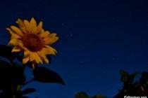 Как фотографировать звёздное небо