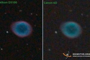 Сравнение Nikon D5100 и Canon 6D