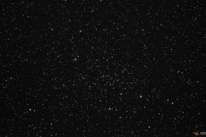 Рассеяное скопление NGC 6940 в Лебеде